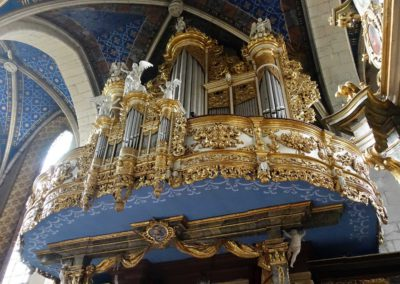 010B Katedralne organy